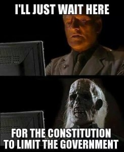 Limited Government Skeleton