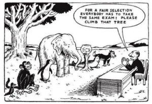 education system climb tree