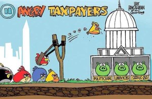 Angry Bird Taxpayers