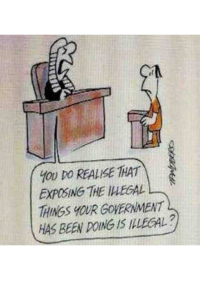 judge-court-its-illegal-to-expose-the-illegal-things-your-government-is-doing-defendent-legal-system-2